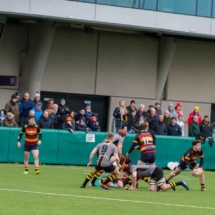 Lansdowne 1st XV v Young Munster 17th November 2019_26