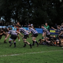 Lansdowne 1st XV v Terenure AIL 25th January 2020_3994