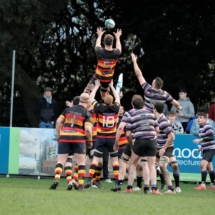 Lansdowne 1st XV v Terenure AIL 25th January 2020_5947